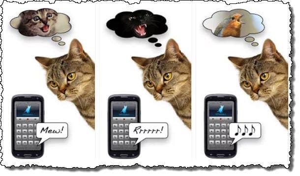 Кошачий переводчик